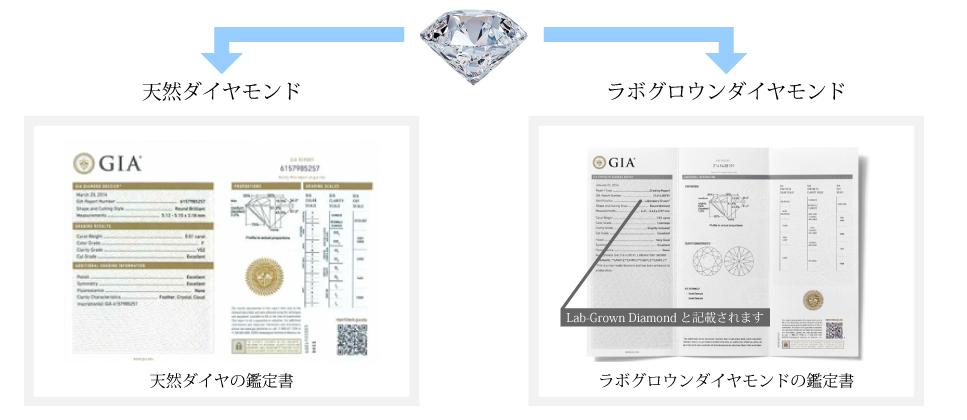 ピュアダイヤモンドコイン